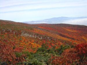 紅葉安達太良山